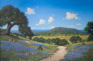 Hill Country View by Larry Prellop