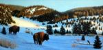 Bison Valley by Bill Scheidt