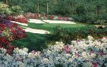 Springtime at Augusta's 13th by Larry Dyke