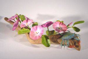 Beach Morning Glory with Blue Crab by Charles Allen