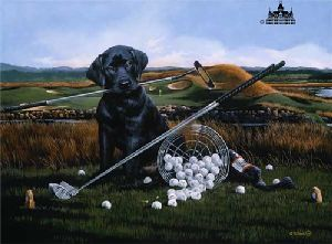 Drive For Show, Putt For Dough by Phillip Crowe
